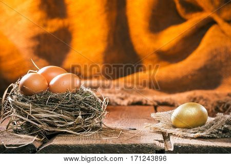One golden egg on the wood boards separately on nest full of usual eggs