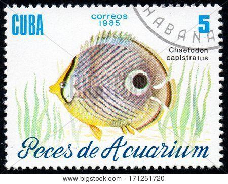 UKRAINE - CIRCA 2017: A stamp printed in Cuba shows aquarium fish Chaetodon capistratus close-up circa 1985