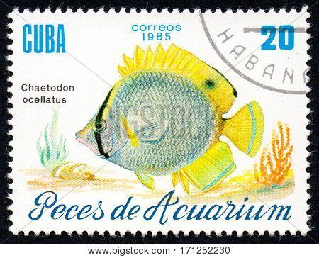 UKRAINE - CIRCA 2017: A stamp printed in Cuba shows aquarium fish Chaetodon ocellatus close-up circa 1985