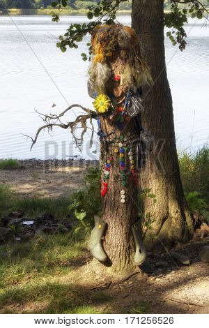 A tree with shoes and other things