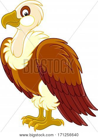 Vector illustration of a large vulture in cartoon style
