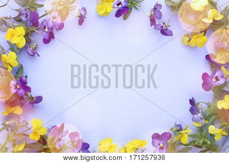 Spring flower frame,copy space for your text.