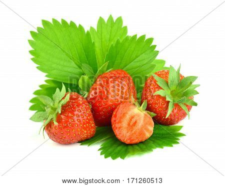 Ripe strawberry with leaves isolate on a white background. Agriculture. Gardening. Horticulture.