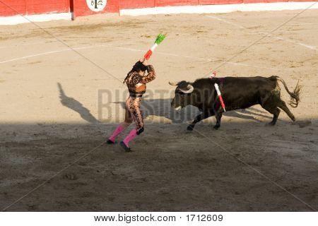 Corrida Bullfighting In Spain