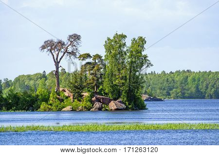 Island forest Gulf Coast stones water park
