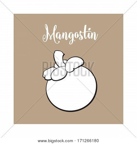 Whole unpeeled, uncut purple mangosteen, mangostin tropical fruit, sketch style vector illustration isolated on brown background. Realistic hand drawing of whole mangosteen fruit