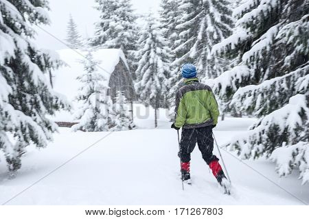 Traveler In Snowshoes Goes To The Wooden Hut