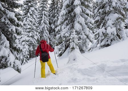 Woman Photographer Is Walking On Snowshoes