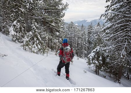 Man Traveler In Snowshoes Relax Among Snow Covered Fir Trees