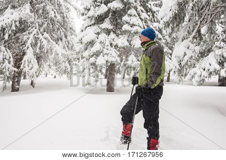 Traveler Resting, Standing Among The Snow-covered Pine Trees