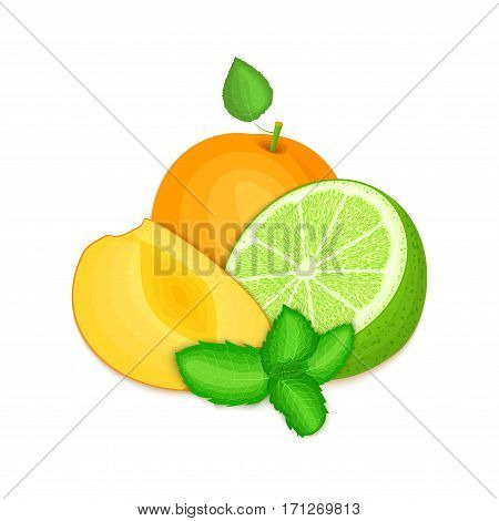 Composition of several apricot citrus lime fruit and mint leaves. Ripe vector apricots limes fruits with fresh pepper mint leaf. Group of tasty fruits for design packaging juice cocktail healthy food