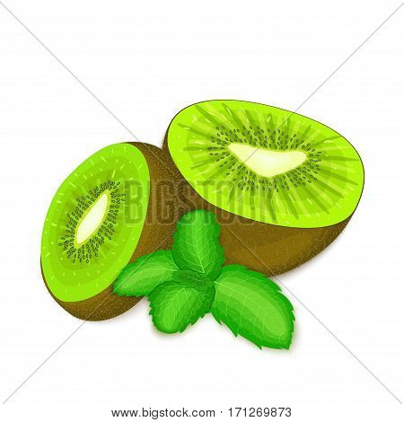Composition of several kiwi and mint leaves. Ripe vector kiwifruits with fresh pepper mint leaf appetizing looking. Group of tasty fruits colorful design for packaging of juice breakfast, healthy food