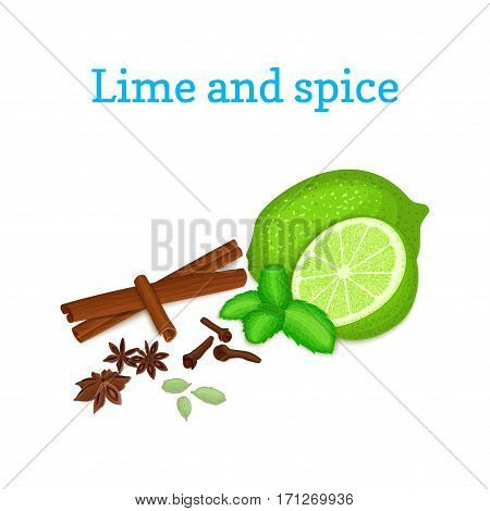 Vector composition of citrus lime fruit with spice. Tropical green lime fruit with fresh mint leaves anise cinnamon cloves cardamom for the packaging of juice, breakfast, healthy eating, vegetarianism