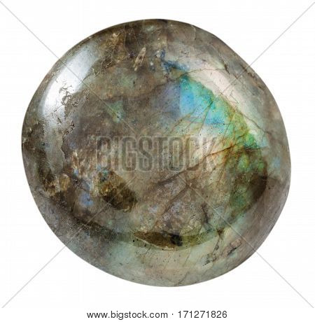 Tumbled Labradorite Gemstone Isolated