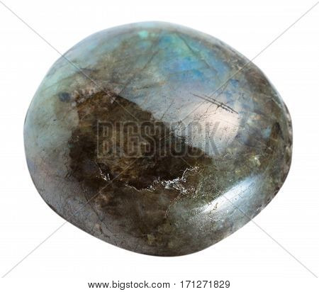 Pebble Of Labradorite Gemstone Isolated