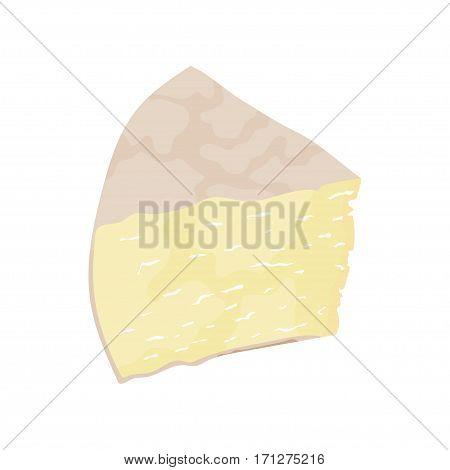 Italy cheese Pecorino on white background. Vector illustration