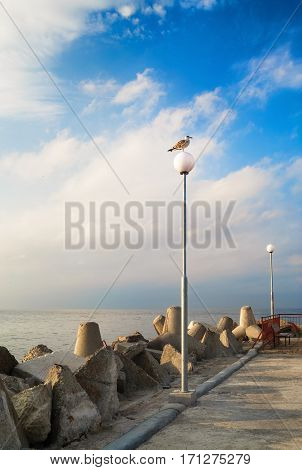 Pierce with lampposts. Breakwater with huge boulders on the coast of the Black Sea. Seagull on a post. Calm summer day. Vertical shot.