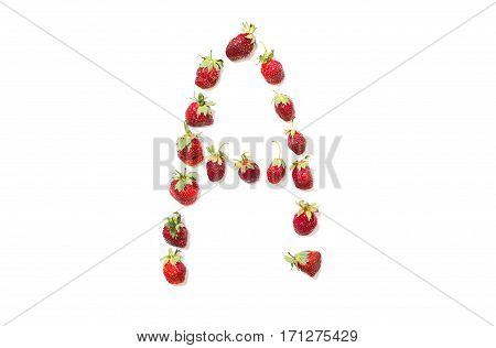 Red strawberries isolated on white background. Funny letters. English alphabet. ABC. Letter A