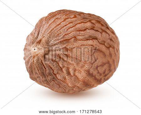 one nutmeg isolated on white background macro.