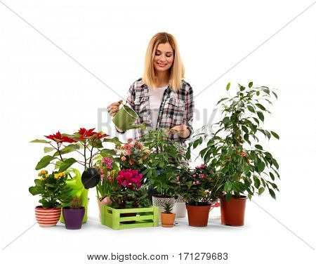 Female florist with beautiful house plants isolated on white background