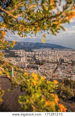 Large City Of Athens With Spring Trees In Greece