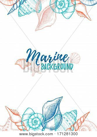 Hand Drawn Vector Colorful Illustration - Marine Background. Design Template With Seashells. Perfect
