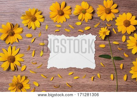 Calcined decorative sheet of white surrounded by yellow flowers and petals. Creating a creative summer card on a wooden background. Composition with natural motifs. Template for congratulations.