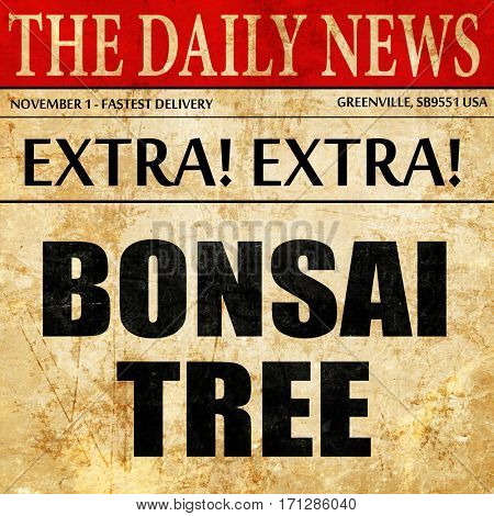 bonsai tree, article text in newspaper
