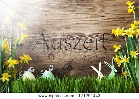 Wooden Background With German Text Auszeit Means Relax. Easter Decoration Like Easter Eggs And Easter Bunny. Sunny Yellow Spring Flower Narcisssus With Gras. Card For Seasons Greetings