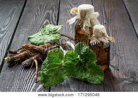 Medicinal plant burdock (Arctium lappa). The roots and leaves of burdock burdock oil in bottles on wooden background. It is used for the treatment and care of hair