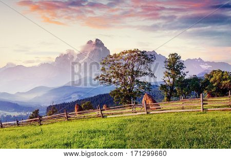 Alps mountain meadow tranquil summer view Europe
