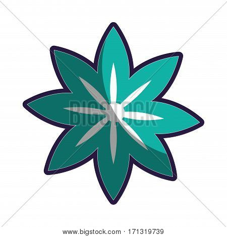 star shape silhouette figure flower icon floral vector illustration