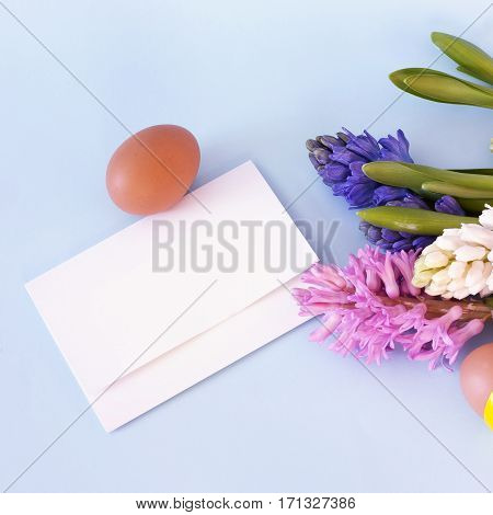 A square Easter greeting card template: a photo of a card with a place for text, hyacinth flowers, and an egg