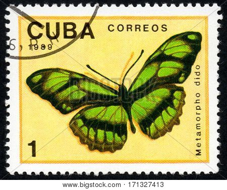 UKRAINE - CIRCA 2017: A stamp printed in Cuba shows image of a butterfly Metamorpho dido close-up circa 1989