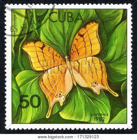 UKRAINE - CIRCA 2017: A stamp printed in Cuba shows of a butterfly Marpesio eleuchea eleuchea close-up circa 1982