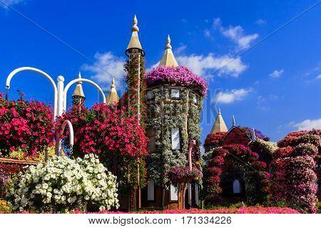 Dubai, UAE - January 5, 2017.   Dubai Miracle Garden - Flower House and ostrich in the foreground. Dubai Miracle Garden is the largest natural flower garden in the world