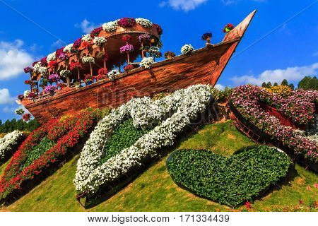 Dubai, UAE - January 5, 2017.   Dubai Miracle Garden - Landscape composition old ship and flowerbed in the shape of heart. Dubai Miracle Garden is the largest natural flower garden in the world