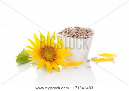Sunflower seeds and bloom isolated on white background.