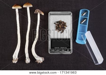 Fresh and dried psilocybin mushroom gelcaps and digital pocket scale on black background top view. Psychedelic therapeutic use.