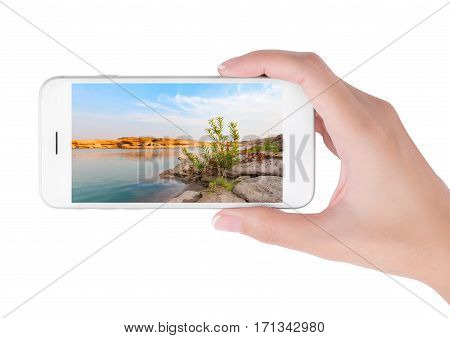 woman using her smartphone for searching the travel information of beautiful oasis. Traveling concept isolated on white background.