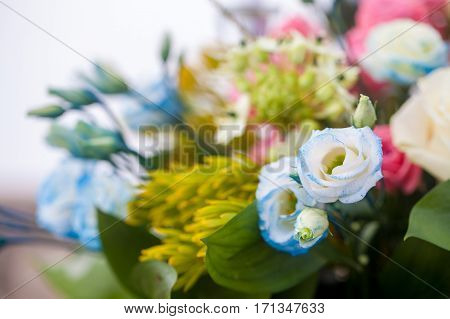 Colorful bridal bouquet with blue roses and colorful flowers