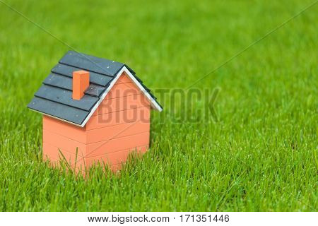 little toy house in the grass, summer day