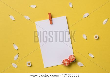Spring or summer background with copy space for text: blank stationary template / invitation mockup with clothespin and orange flowers chamomiles and petals. Top view. Flat lay.
