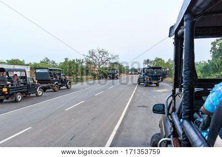Safari vehicles before morning game drive near entrance to Yala national park, Sri Lanka