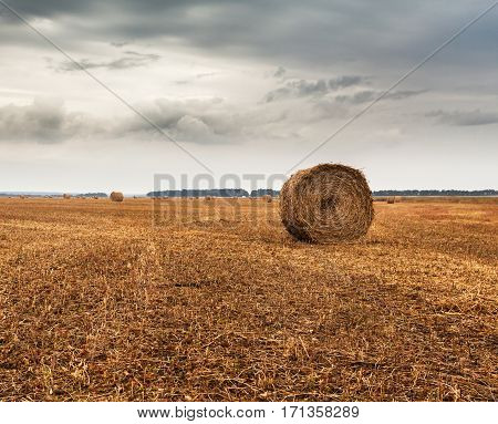 Autumn field with sheaves of hay and dramatic sky. Ukraine
