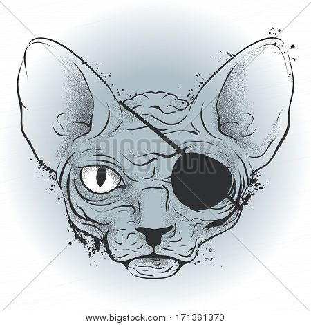 vector graphics, ink drawing, bald cat pirate with an eye patch on a light background