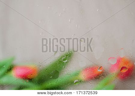 Beautiful red tulips behind the wet window with realistic rain drops. Abstract background in warm halftones with raindrops, blurred style. Delicate tints for modern pattern, wallpaper or banner design, place for writing text