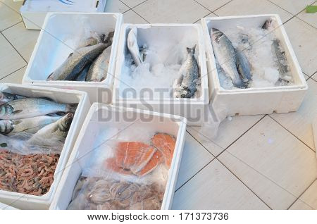 salmon and other fish in plastic boxe on a floor in fish markey antalya turkey