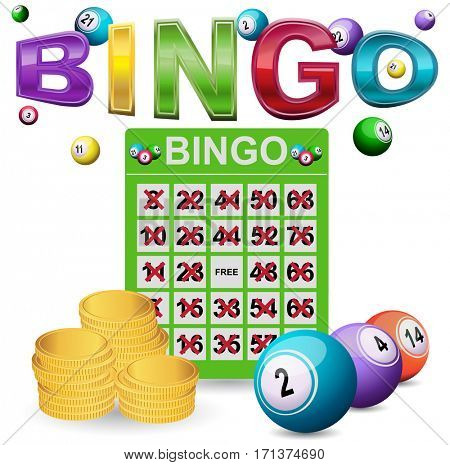 Bingo and big win
