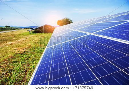 Solar panels on the grass with blue sky.
